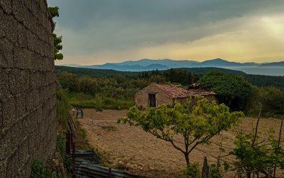 Najpopularniejsze hobby na greckiej wsi? Ogród warzywny!