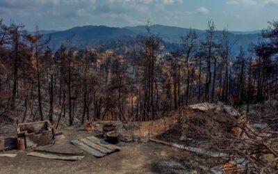 Czy ogromny pożar na Evii to celowe działanie?